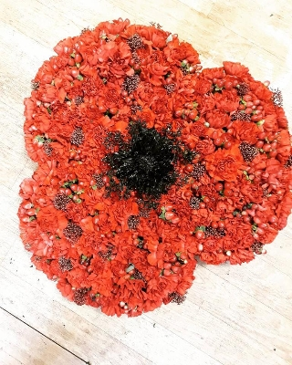 Poppy tribute