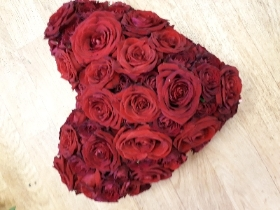Red rose solid heart