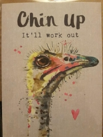 'keep your chin up' giftcard