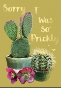 'Sorry i was so prickly ' gift card