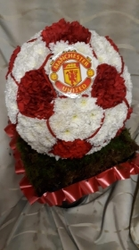 3D Football with Manchester United Badge