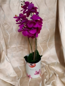 Magenta artificial phaelenopsis orchid
