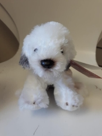 Old English Sheep dog Puppy