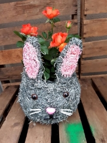 Orange Rose bunny
