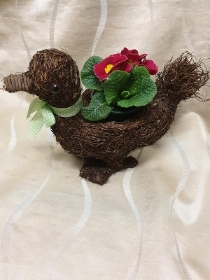Small Duck Planter